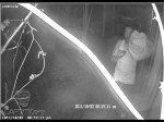 Burglar in Bel Air Hills Caught on Tape