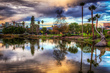 The New York Times Discovers This Crazy Place Called the La Brea Tar Pits