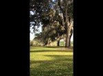 Bok Tower Gardens, Florida: Sound of Tower Bells